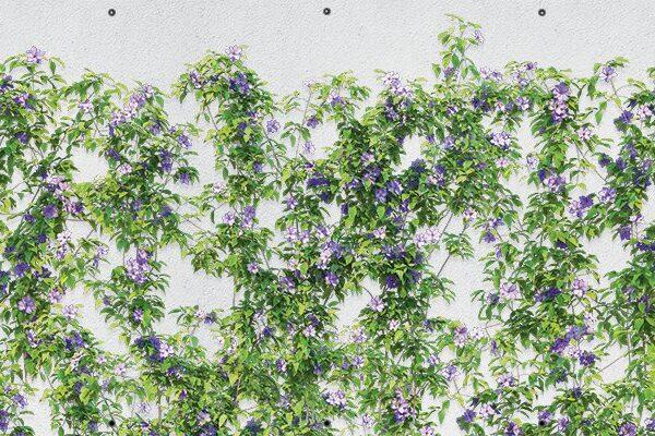 Fioletowe kwiaty - Osłona balkonowa