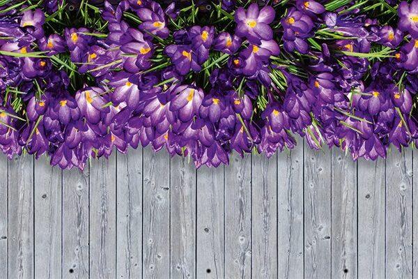 Krokusy - Osłona kwiatowa na balkon