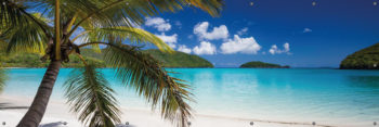 Plaża, morze i palma - Osłona balkonowa