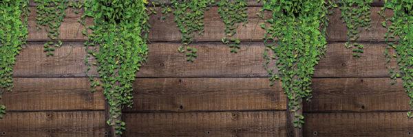 Mata balkonowa zwisające liście