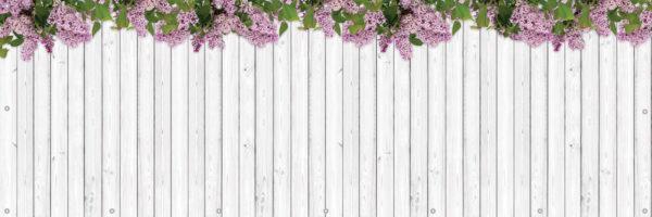 Białe deski i kwiaty bzu