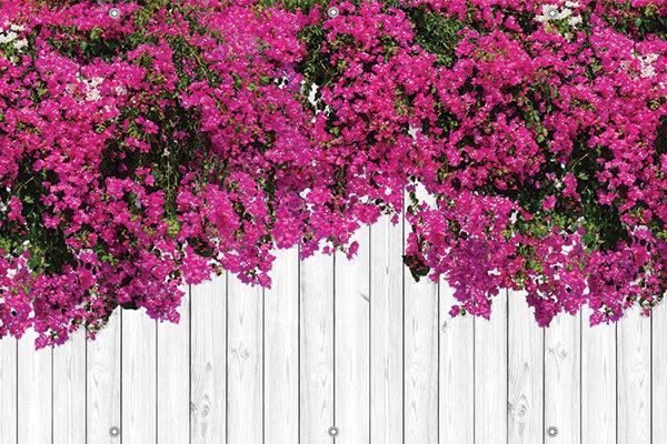 Osłona balkonowa kwiaty - Bugenwilla okazała