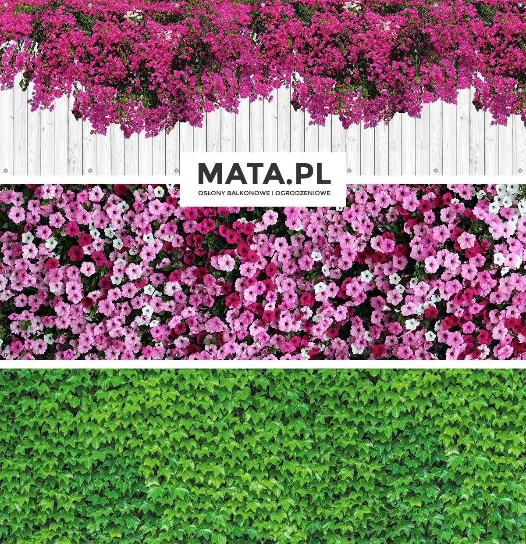 Kwiaty na balkon zwisające i zielone rośliny