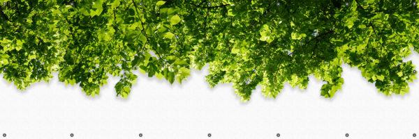Mata balkonowa liście na jasnej ścianie